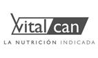 logo_vitalcan