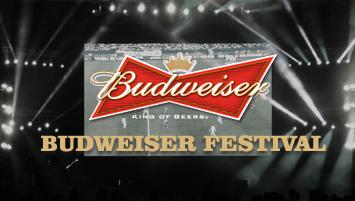 budweiser festival_home